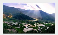 Magnificent terraced rice fields during water pouring season