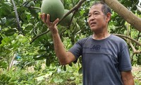 War invalid helps farmers in agricultural production