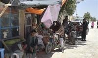 Taliban press advance after capturing 2 major Afghan cities
