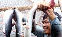 Trao đổi thương mại Việt Nam – Braxin tiếp tục tăng trưởng