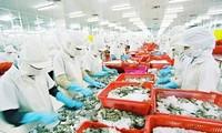 Hiệp định thương mại tự do EU-Việt Nam và lợi ích của doanh nghiệp