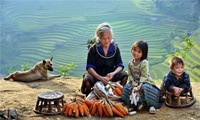 Phát động triển lãm Ảnh nghệ thuật Việt Nam năm 2016