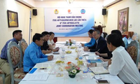 Tham vấn chung giữa tổ chức công đoàn quốc tế khu vực châu Á-Thái Bình Dương và Việt Nam, Lào
