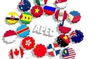 Việt Nam tăng cường vai trò và vị thế trong APEC