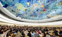 Giảm thiểu tác hại của biến đổi khí hậu để nâng cao quyền con người