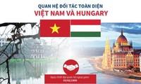 Điện mừng kỷ niệm 70 năm quan hệ ngoại giao Việt Nam - Hungary