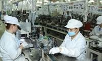 Trao đổi thương mại hai chiều giữa Việt Nam và Israel đạt trên 236 triệu USD trong 2 tháng đầu năm
