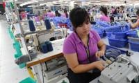 EVFTA: Doanh nghiệp chủ động thay đổi