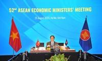 Việt Nam chủ động đề xuất và tham gia vào các sáng kiến khu vực nhằm thúc đẩy phục hồi kinh tế khu vực và thế giới
