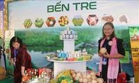 Châu Âu là thị trường xuất khẩu lớn thứ 2 của Việt Nam