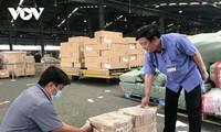 Lô hàng dược liệu đầu tiên của nông dân Quảng Trị xuất khẩu sang Mỹ