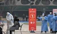 Lao động Việt Nam được phép gia hạn thời gian lưu trú ở Hàn Quốc thêm 1 năm