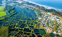 Stunning beauty of Quang Ngai captured from above