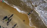 Vinh Thanh mùa biển động