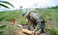 Vietnam incentiva eliminación de secuelas de las bombas y minas en posguerra
