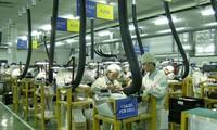 Entra en vigor las enmiendas laborales con más beneficios a los trabajadores vietnamitas