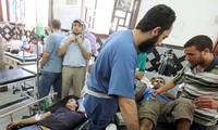 Instan a investigar los violentos enfrentamientos en Egipto