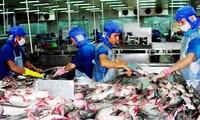 Cargas tributarias de Estados Unidos contra los pescados de Vietnam