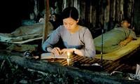 "Proyectan laureada película vietnamita ""Dung Dot"" en Venezuela"