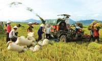 Vietnam logra modernizar su agricultura nacional