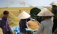 Iniciales logros en construcción de nuevo campo en Ciudad Ho Chi Minh