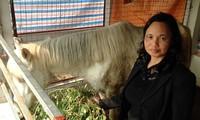 Proeza de la reina vietnamita del corcel blanco