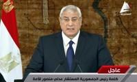 Egipto convoca elecciones presidenciales anticipadas