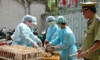Vietnam dispuesto a responder a enfermedades causadas por gripe A