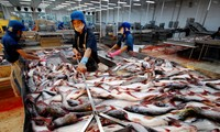 Exhortan a objetividad estadounidense en imposición de aranceles antidumping