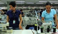Vietnam mantiene la estabilidad productiva para las empresas extranjeras