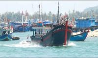 Gobierno vietnamita apoya a los pescadores con créditos preferenciales