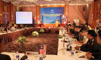 Vietnam se esfuerza en las acciones humanitarias contra minas