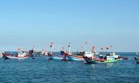 Vietnam lanzará nuevas políticas de apoyo a los pescadores