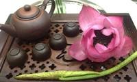 Disfrute de la belleza pura de la flor de loto