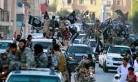 Países árabes y Estados Unidos por crear una alianza contra el Estado Islámico