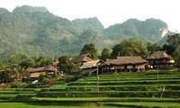 Singulares casas de los Muong Bi