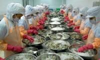 Impugnan arancel antidumping estadounidense al camarón vietnamita