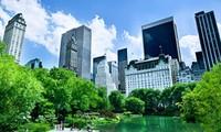 Taller sobre el crecimiento verde en Hanoi