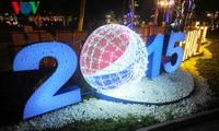 Vietnam y el mundo saludan al Año Nuevo 20l5
