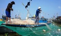 Truong Sa – soporte para pescadores vietnamitas