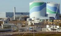 Electricidad nuclear sigue siendo principal  fuente energética de Japón