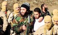 IS declaró debatir un avión sirio