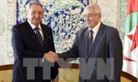 Cuba apoya plenamente la política exterior de Argelia