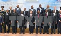 Forman zona de libre comercio en África