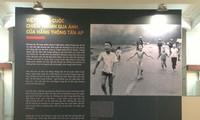 Fotografías macro de la guerra de Vietnam