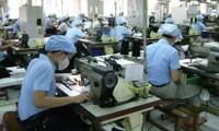 Empresas vietnamitas y checas buscan oportunidades de cooperación