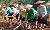 Meo Vac genera consenso popular para el desarrollo rural