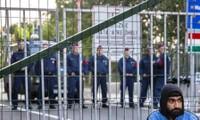 Hungría aplica medidas contundentes contra refugiados en la frontera con Serbia