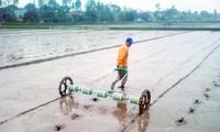 Transparencia y democracia en la modernización rural de Hiep Hoa, Bac Giang