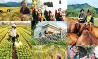 Unos 43 millones de vietnamitas salen de la pobreza en solo 15 años